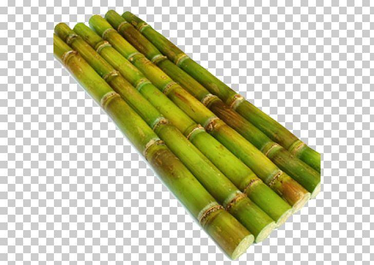 Sugarcane Stock Photography PNG, Clipart, Asparagus, Bamboo.