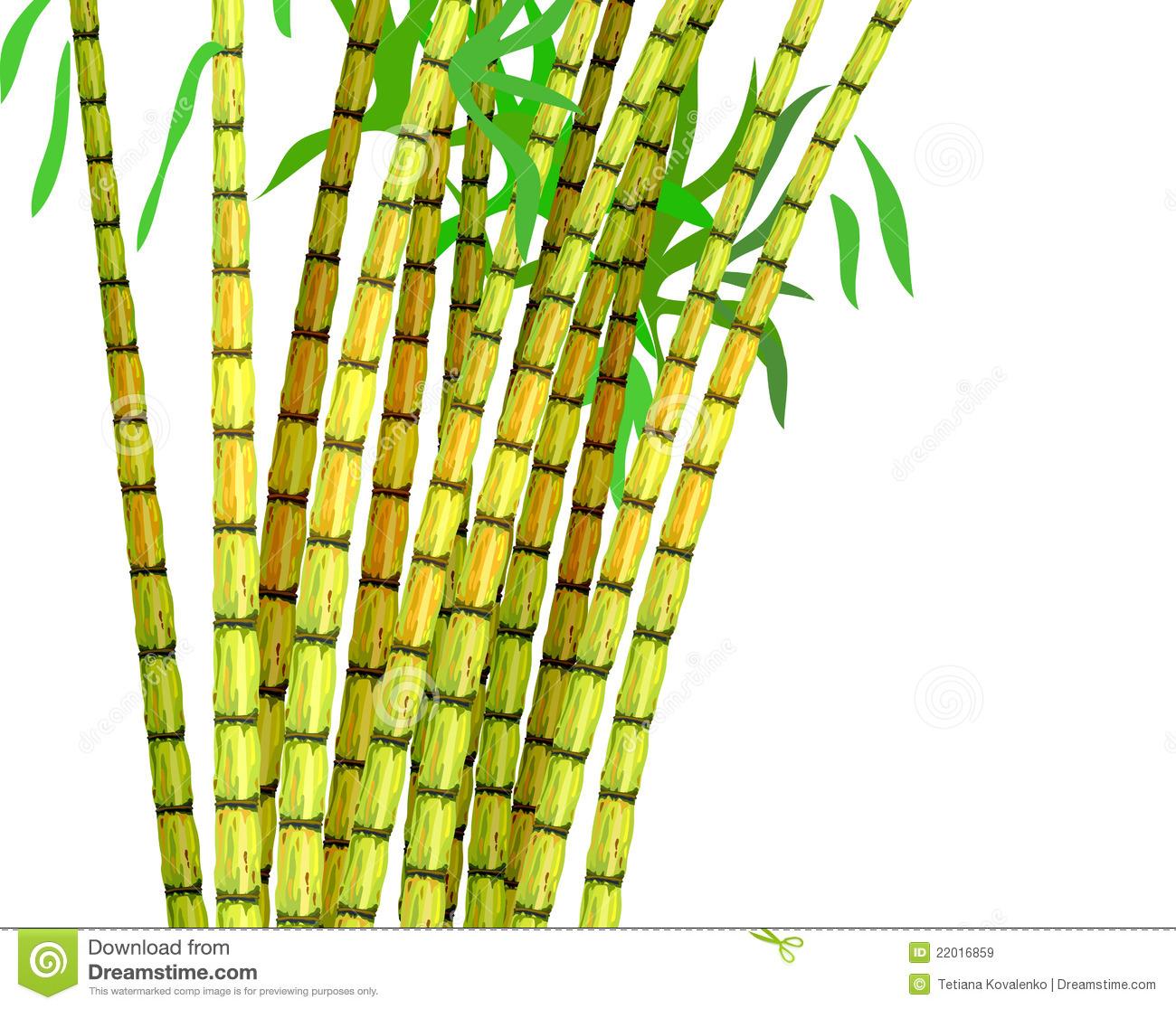 Sugar Cane PNG Black And White Transparent Sugar Cane Black.