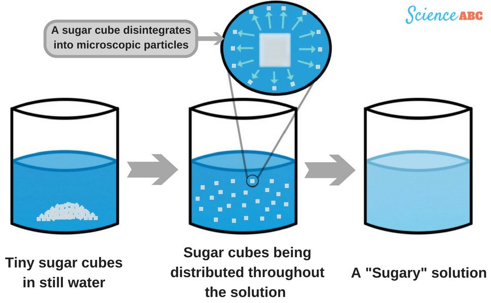 Why Does Sugar Disappear When It Dissolves In Water? » Science ABC.