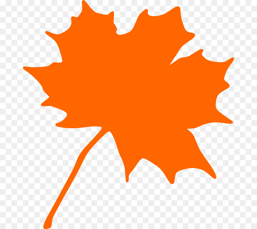 Autumn Leaf Drawing png download.