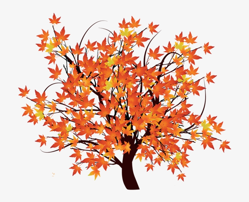 Pin Maple Tree Clip Art.