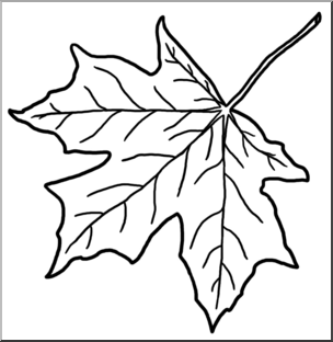 Clip Art: Leaf: Sugar Maple B&W I abcteach.com.
