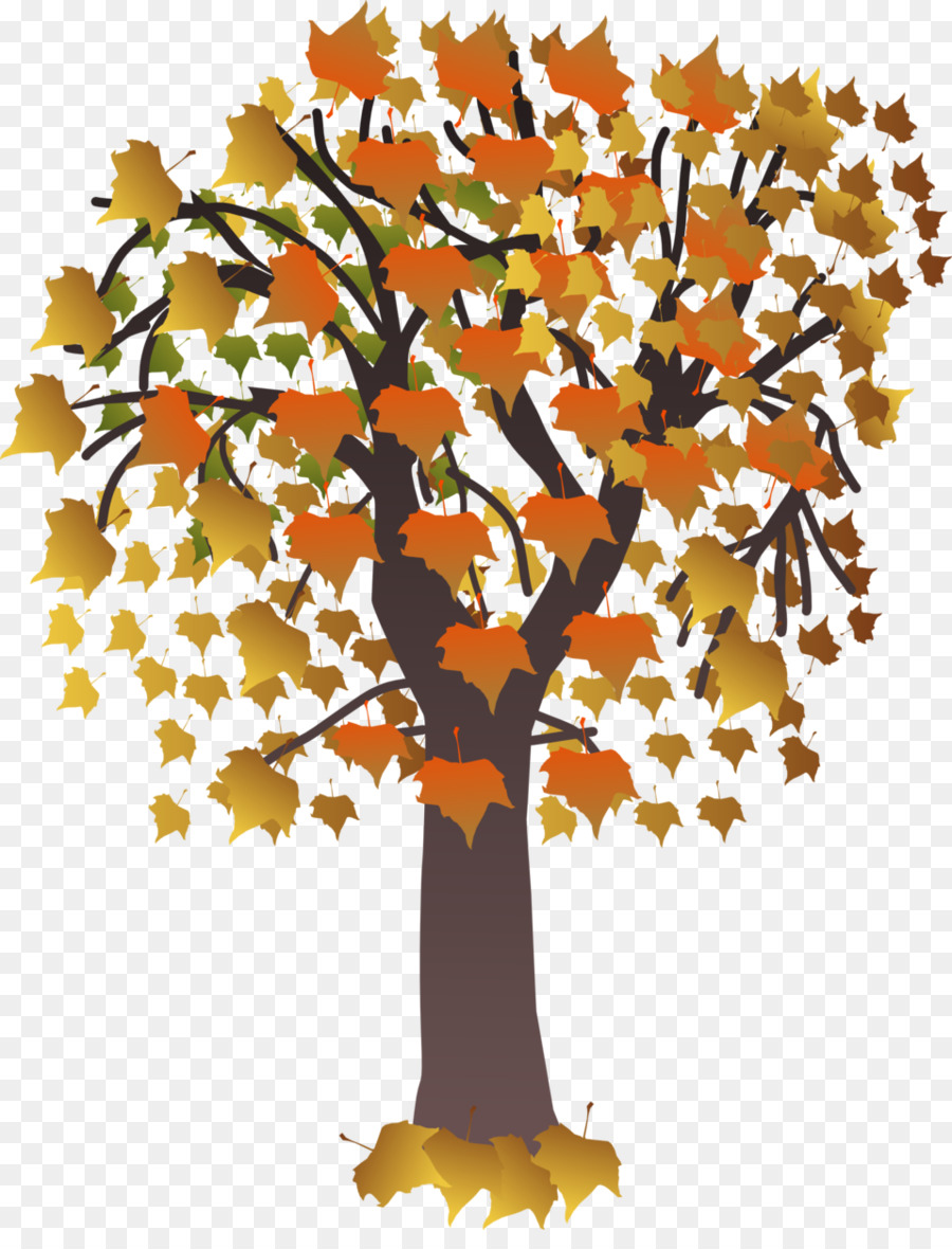 Autumn Leaf Drawing clipart.