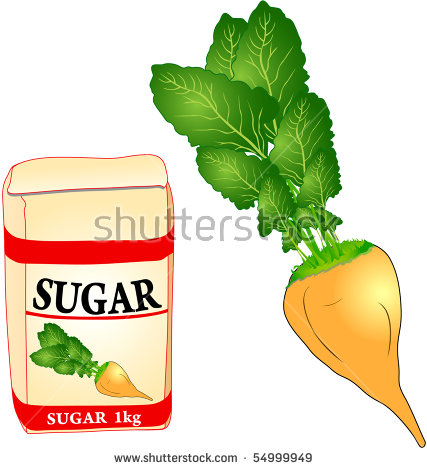 Sugar Beet Stock Photos, Royalty.