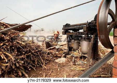 Stock Photograph of India: Punjab: Sugar production from Sugar.