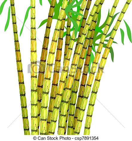 Sugarcane Clip Art and Stock Illustrations. 347 Sugarcane EPS.