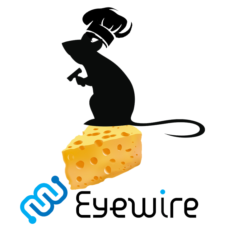 Eyewire.org: Meow Dynasty, The Rise of Cheese Empire.
