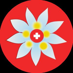 Swiss Edelweiss Clip Art at Clker.com.