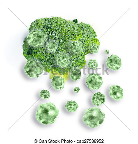 Stock Illustrations of Sulforaphane csp27588952.
