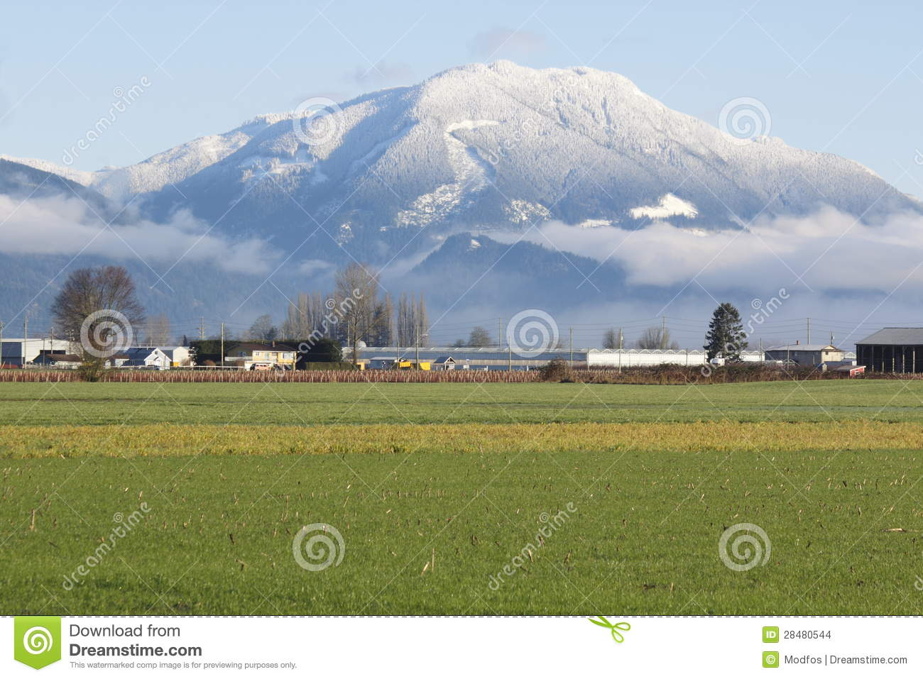 Sumas Stock Photos, Images, & Pictures.