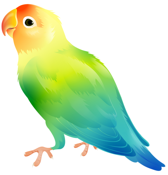 Clipart summer bird, Clipart summer bird Transparent FREE.