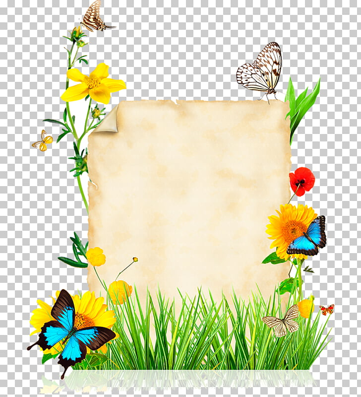 Flower Stock photography Best borders , summer vacation PNG.