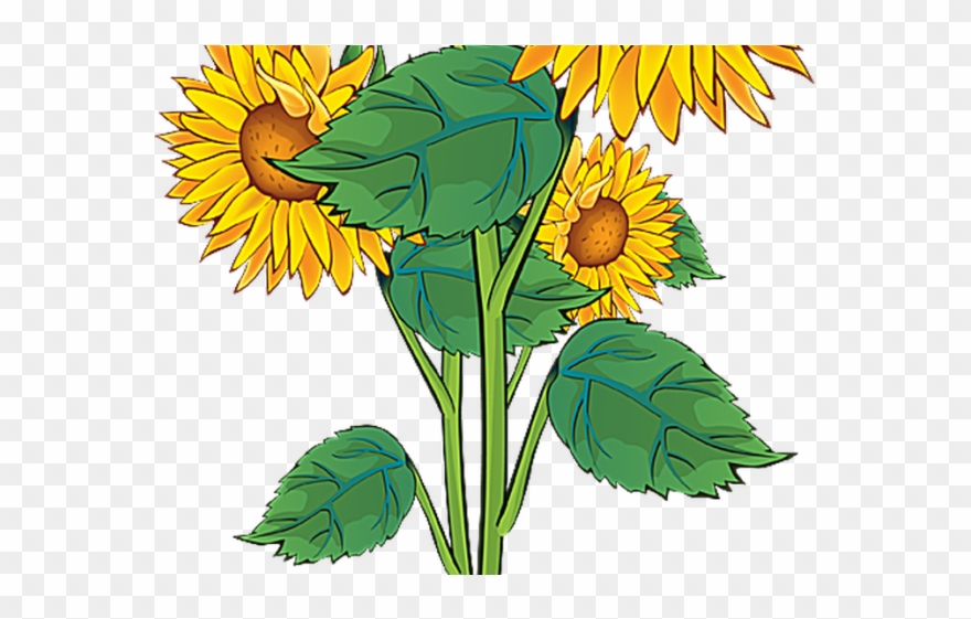 Plant Clipart Summer.