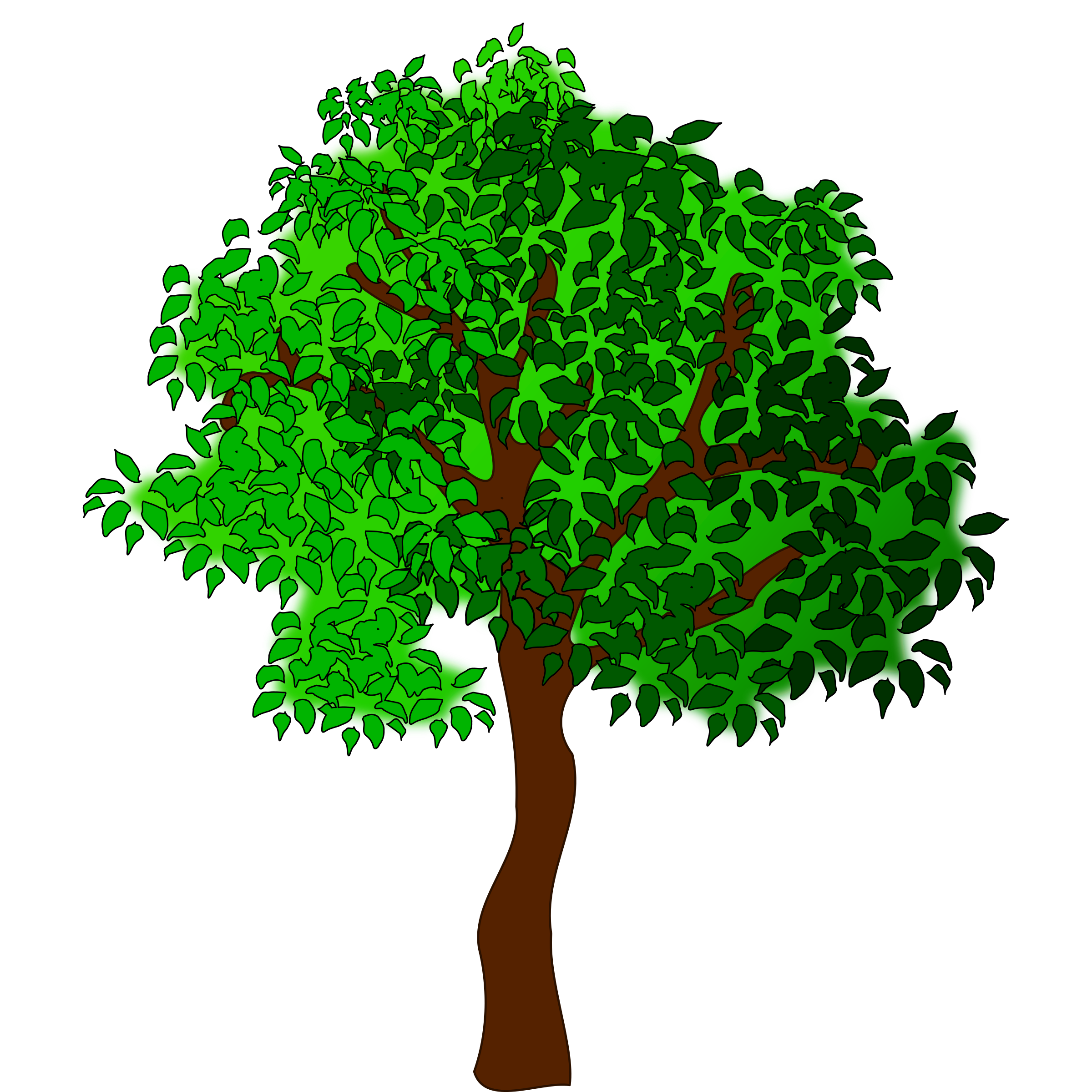 Summer green tree clipart 20 free Cliparts | Download ...