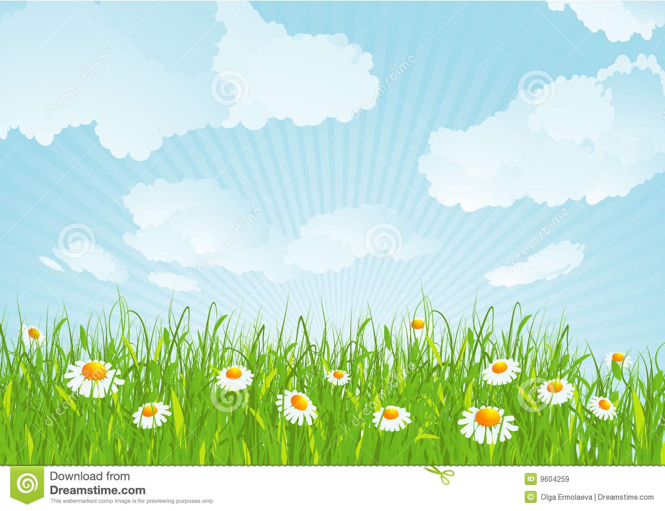 Summer Meadow. Vector Background. Royalty Free Stock Images.