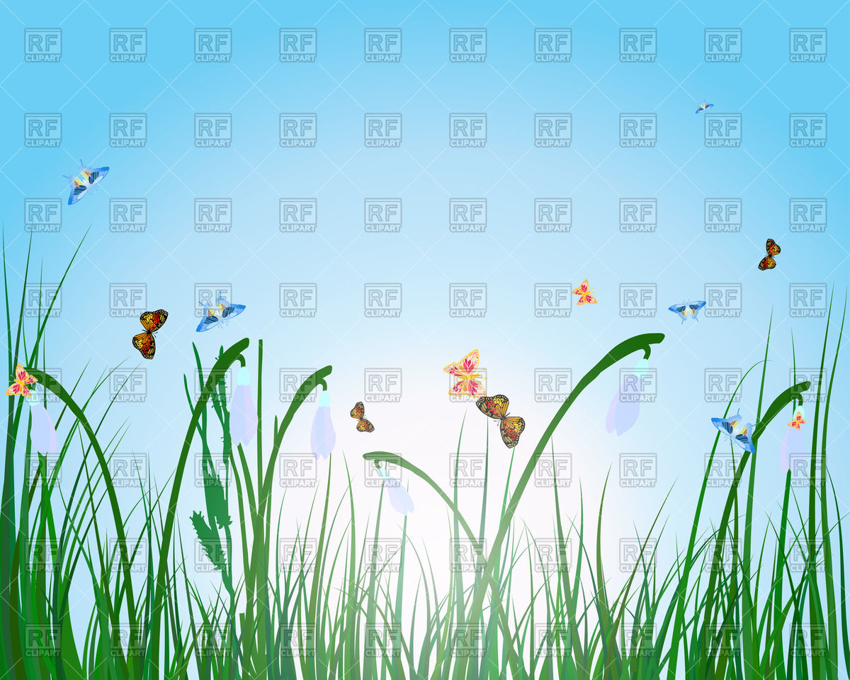 Summer meadow background Vector Image #107349.