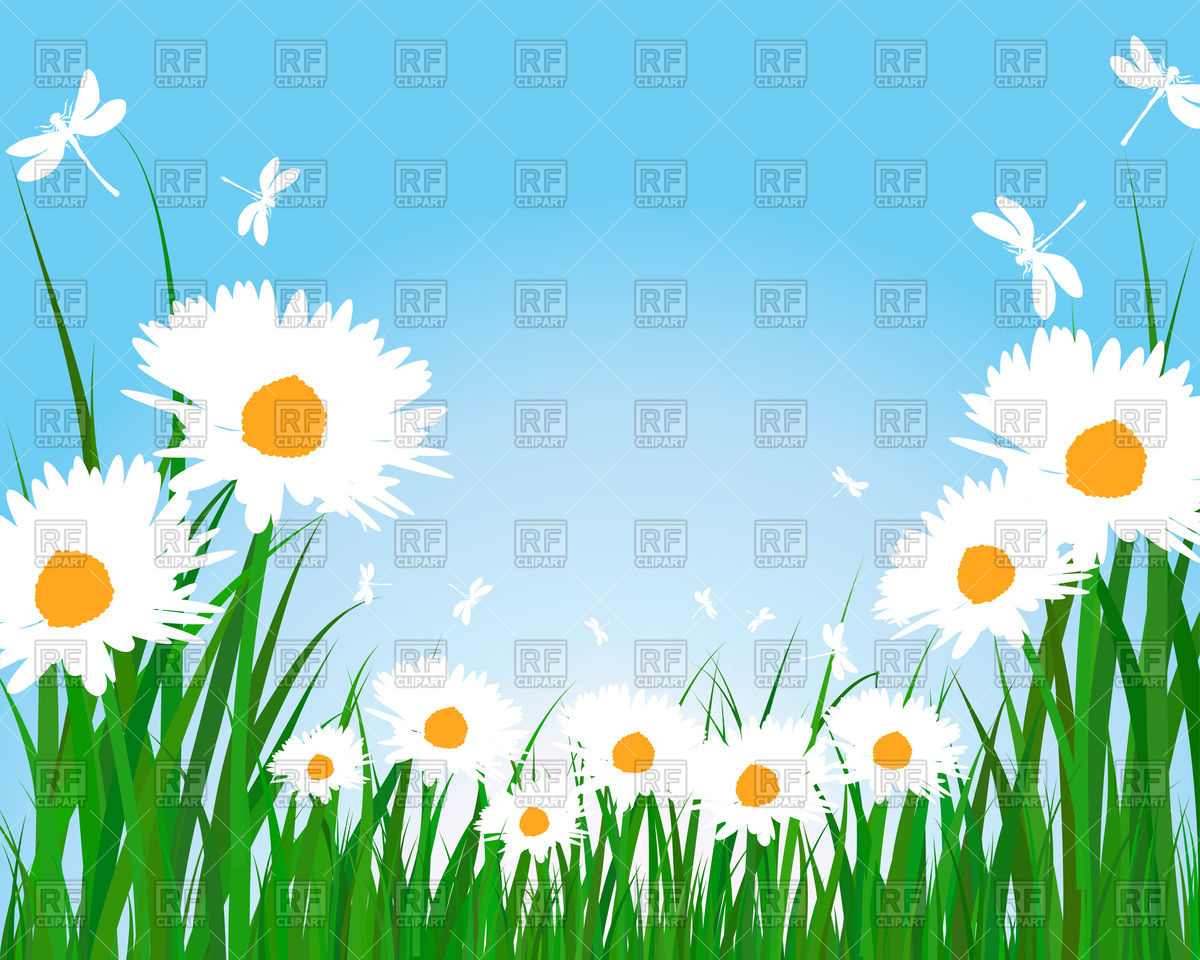 Summer meadow background Vector Image #107289.