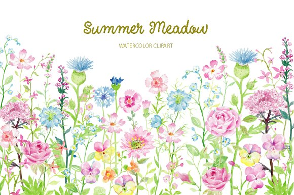 Watercolor Clipart Summer Meadow ~ Illustrations on Creative Market.
