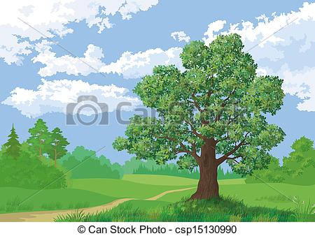 Stock Illustration of Landscape, summer forest and oak tree.