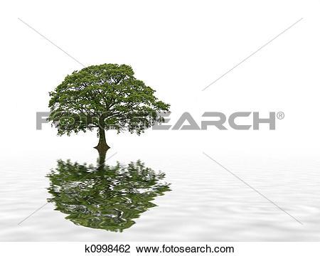 Clip Art of Summer Oak Tree Abstract k0998462.