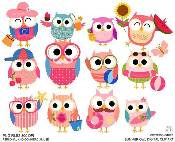 Summer owls Digital clip art for Personal and Commercial use.