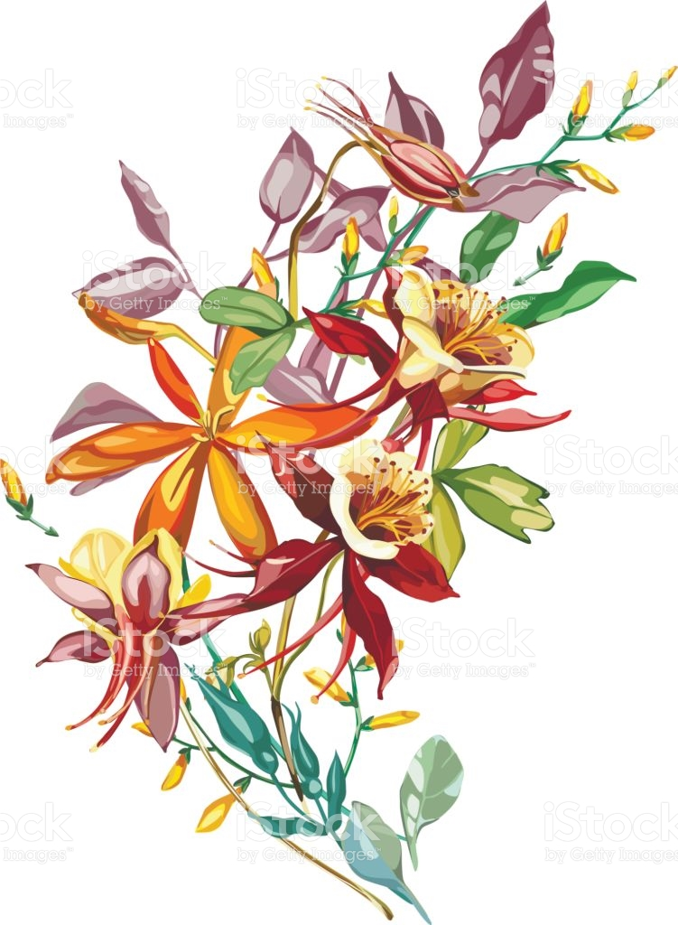 Flowering Plants Clipart With Names.