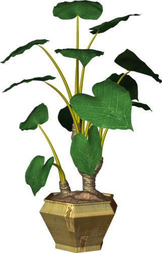 Garden Pot Plant (59).png.