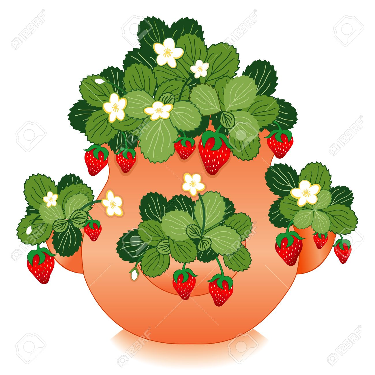 7,818 Flowerpot Stock Vector Illustration And Royalty Free.