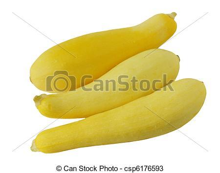 Stock Photos of Zucchini Summer Squash csp6176593.