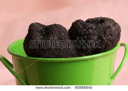 Black Truffle Mushroom Stock Photos, Royalty.