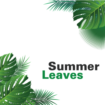 Summer Vector, Free Download Summer beach, Summer party.
