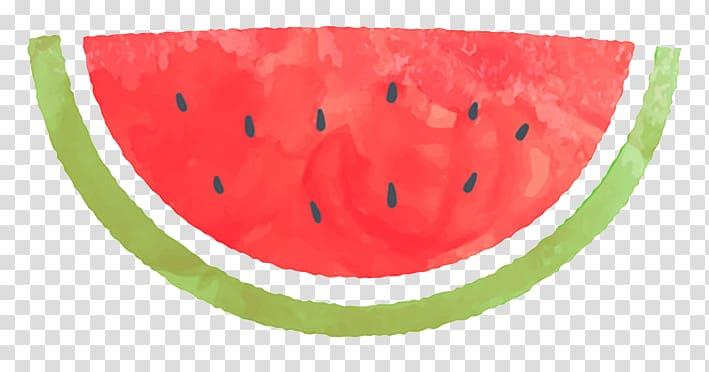 Watermelon slice , Watermelon Citrullus lanatus Watercolor.