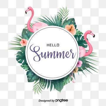 Tropical Summer Flamingo Elements, Summertime, Summer Rim.