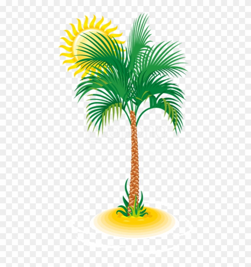 Free Png Palm And Sun Png Images Transparent.
