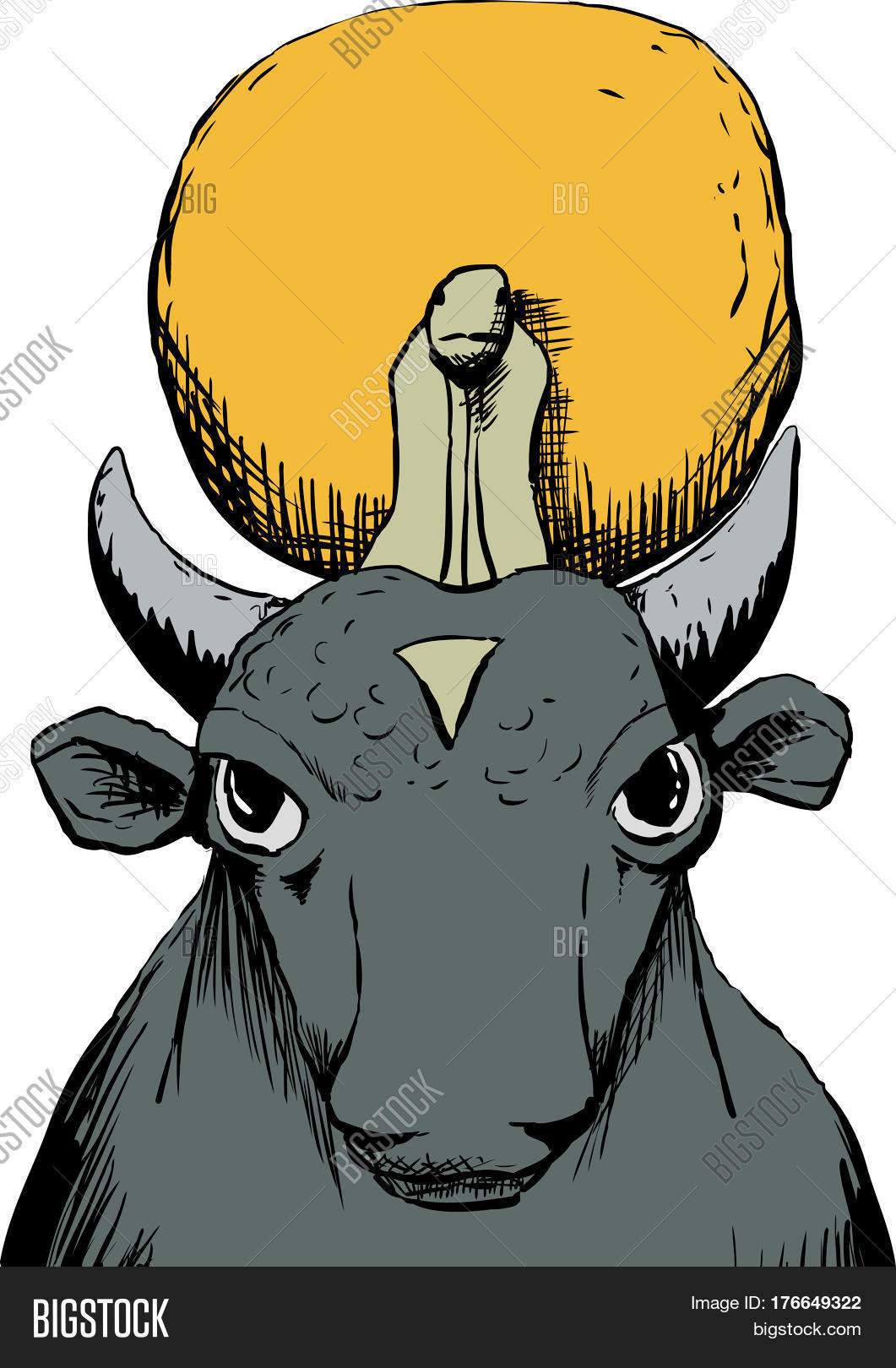 Apis Bull God With Sun Disk Stock Photo & Stock Images.