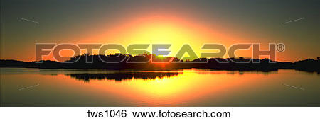 Stock Images of Panoramic view of sun disappearing behind mangrove.
