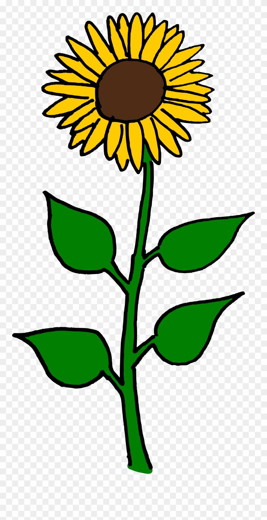 Flower Clipart Sunflower.