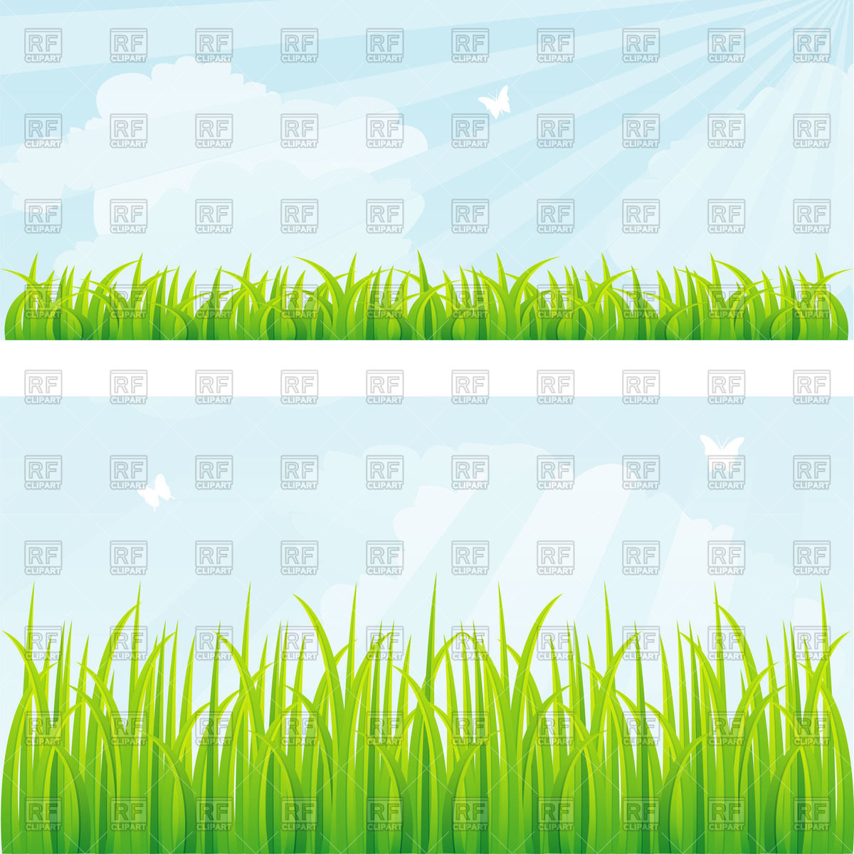 Summer grass and sun rays Vector Image #58456.