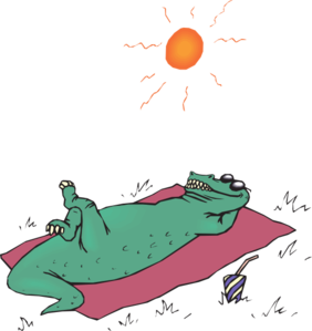 Alligator Sunbathing Clip Art at Clker.com.