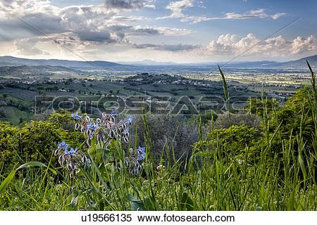 Stock Image of Montefalco: view of sun.
