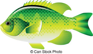 Sunfish Clipart Vector Graphics. 88 Sunfish EPS clip art vector.