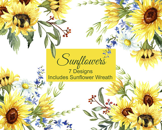Sunflower Watercolor Clip Art Includes Sunflowers Daisies.