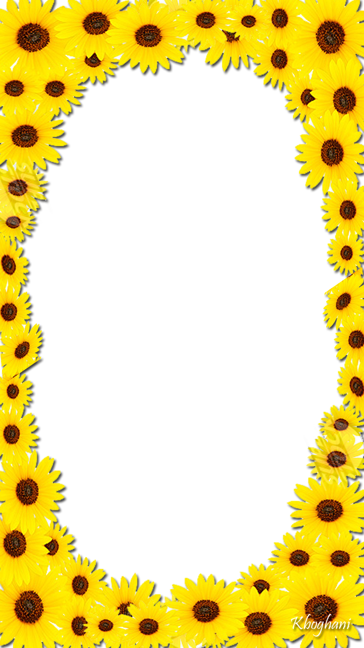 HD Sunflower Frame.