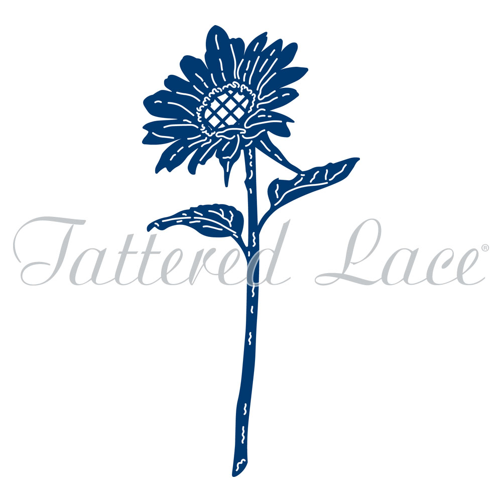 Tattered Lace.