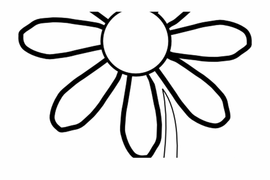Outline Of A Sunflower Clipart Best.
