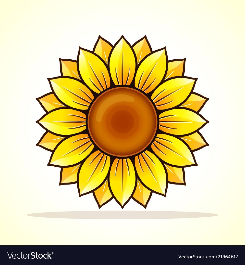 Yellow sunflower icon design.