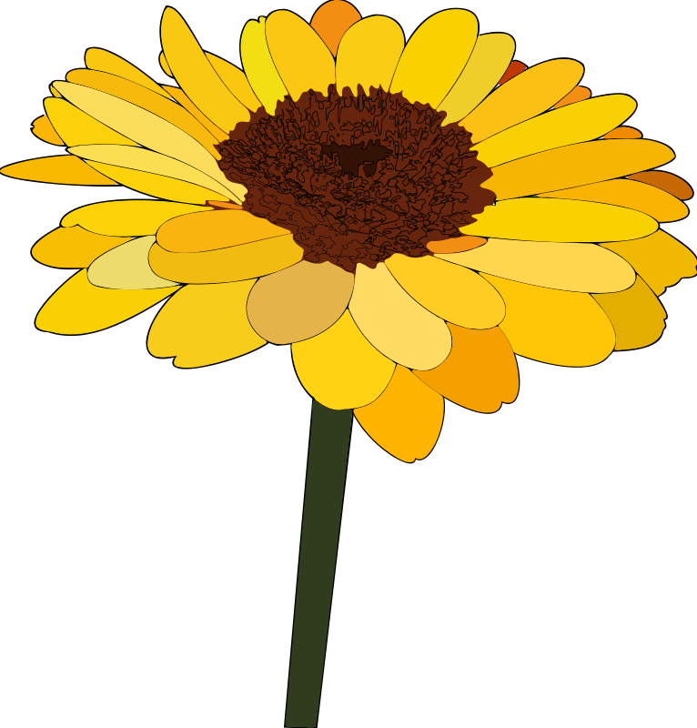 Sunflower vectors photos and psd files free download clip.