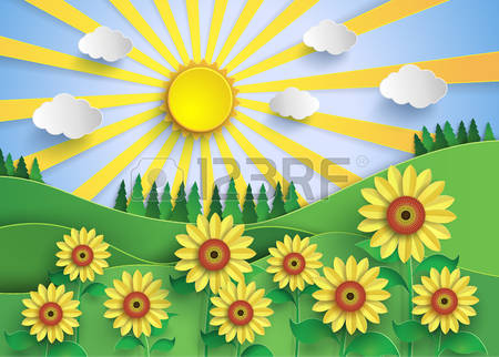 1,817 Sunflower Field Stock Illustrations, Cliparts And Royalty.