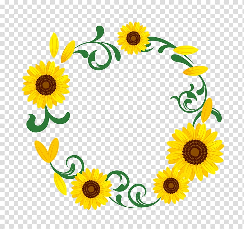 Yellow sunflower flower illustration, Common sunflower.