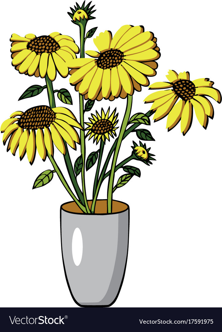 Sunflower in vase on white.